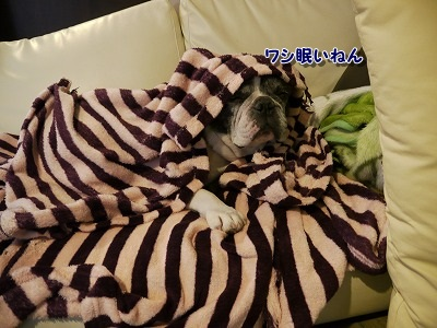 眠い (3)