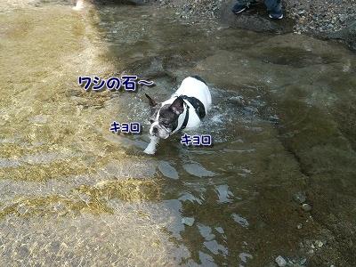 川遊び3 (2)