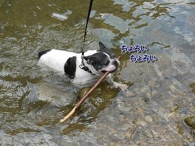川遊び (1)