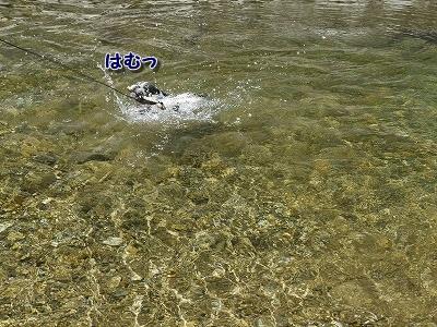 神河町 (2)