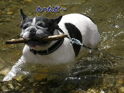 神河町 (4)