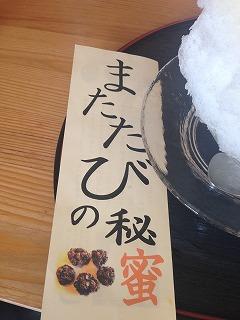 かき氷 (5)