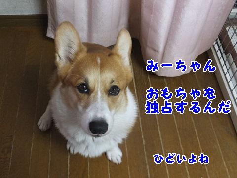 10061601.jpg