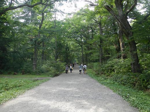 戸隠神社-奥社_九頭龍社