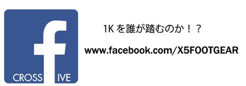 fbA-01.jpg