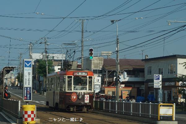 densya812.jpg