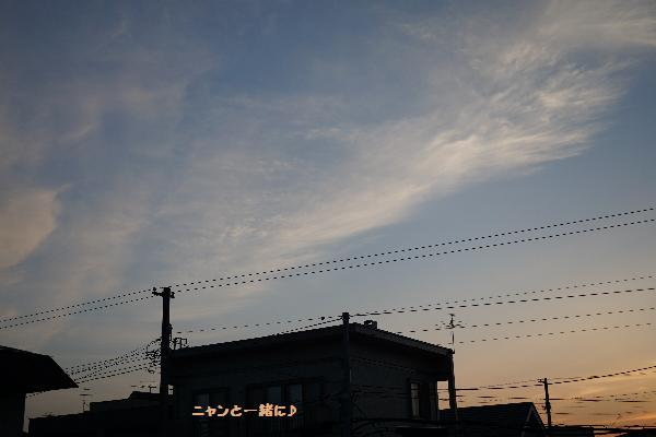 yoru71677.jpg