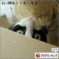 dai20160415_banner.jpg