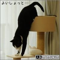 dai20160418_banner.jpg