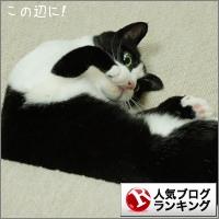 dai20160422_banner.jpg
