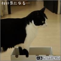 dai20160425_banner.jpg