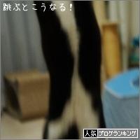 dai20160426_banner.jpg