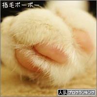 dai20160427_banner.jpg