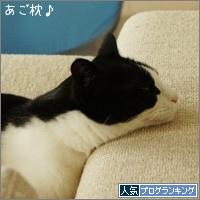 dai20160502_banner.jpg