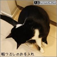 dai20160509_banner.jpg