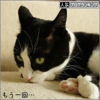 dai20160510_banner.jpg