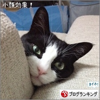 dai20160525_banner.jpg