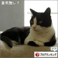 dai20160526_banner.jpg