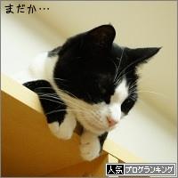 dai20160527_banner.jpg