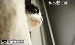 dai20160530_banner.jpg