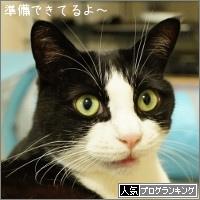 dai20160531_banner.jpg