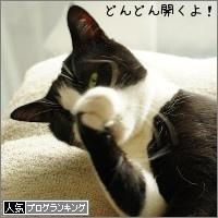 dai20160601_banner.jpg