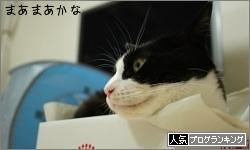dai20160609_banner.jpg
