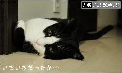 dai20160610_banner.jpg