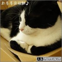 dai20160615_banner.jpg