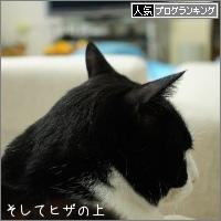 dai20160617_banner.jpg