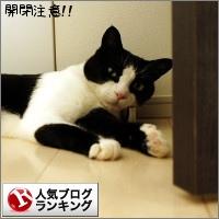 dai20160620_banner.jpg
