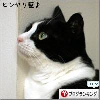 dai20160624_banner.jpg