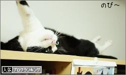 dai20160627_banner.jpg
