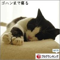 dai20160630_banner.jpg