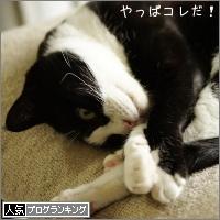 dai20160706_banner.jpg