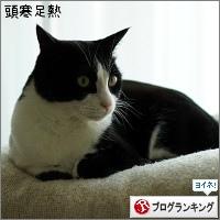 dai20160711_banner.jpg