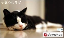 dai20160714_banner.jpg