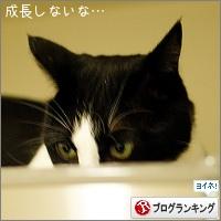 dai20160729_banner.jpg