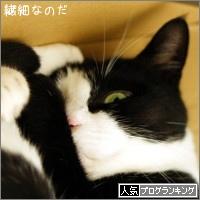 dai20160805_banner.jpg