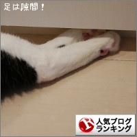 dai20160823_banner.jpg