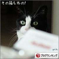 dai20160901_banner.jpg