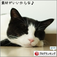 dai20160902_banner.jpg