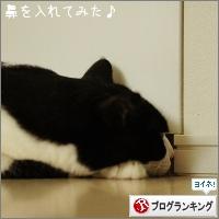 dai20160913_banner.jpg