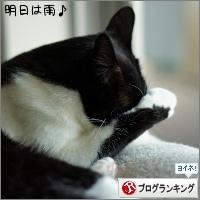 dai20160914_banner.jpg