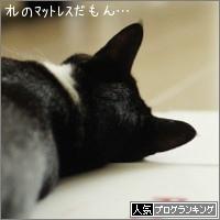 dai20160915_banner.jpg