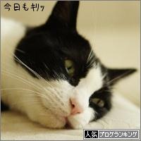 dai20160916_banner.jpg