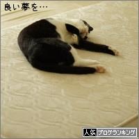 dai20160923_banner.jpg