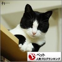 dai20160926_banner.jpg
