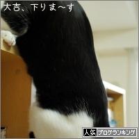 dai20160929_banner.jpg