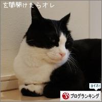 dai20161003_banner.jpg